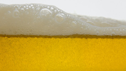 Beer Splash White Yellow Fast stock footage