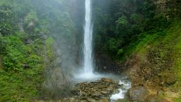 rainforest waterfall Footage