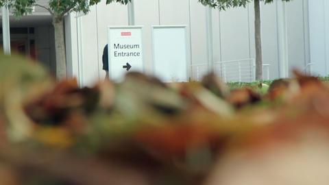 Museum Entrance, Live Action
