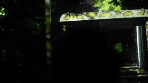Singapore night safari tram seen at night Footage