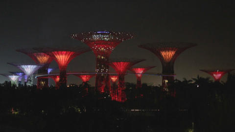 singapore supertree grove - light show red lights Stock Video Footage