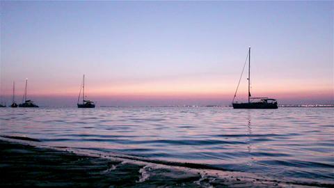 Ria Formosa Dawn Boat Silhouette B Footage