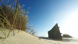 Sand Dunes stock footage