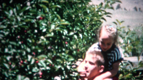 (8mm Film) Picking Cherries On Shoulder 1953 stock footage