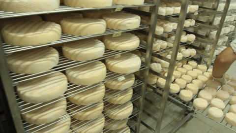 Blue cheese gouda Factory food process parmesan swiss... Stock Video Footage