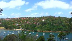 Australia Landscape Stock Video Footage