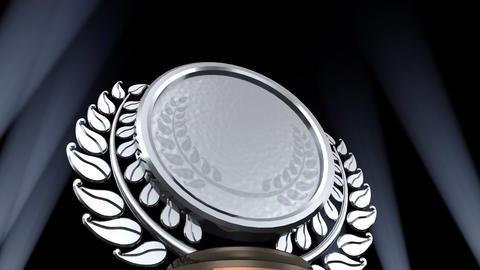 Medal Prize Trophy D2 HD Stock Video Footage