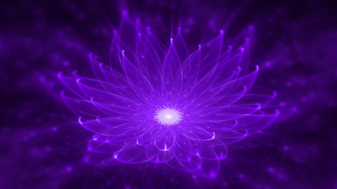 Radiant Lotus Water Lily, Enlightenment or Meditation and Universe, Magic scene Animation