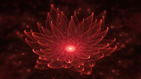 Red Lotus, Water Lily, Enlightenment or Meditation and Universe, Magic scene Animation