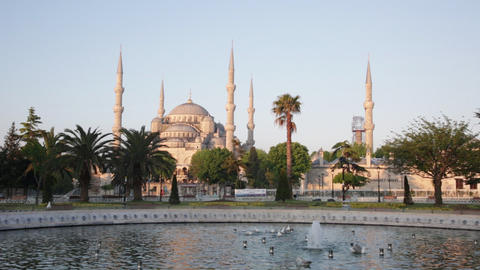 Seagulls Bathe In The Fountain Near The Blue Mosque stock footage