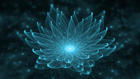 Blue Lotus, Water Lily, Enlightenment or Meditation and Universe, Magic Scene Animation