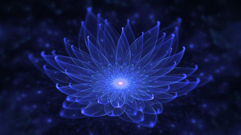 Glowing Blue Lotus, Water Lily, Enlightenment or Meditation and Universe, Magic Animation