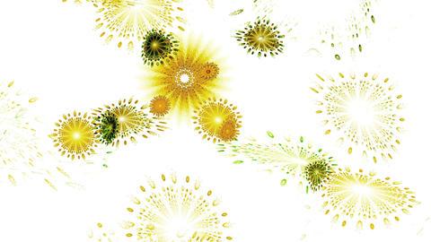 whirlpool of flowers, flowers in circular motion Stock Video Footage