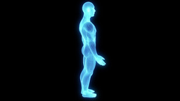 Male Human Hologram Wireframe Animation