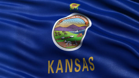4K Kansas state flag seamless loop Ultra-HD Animation