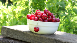 Cherries In A White Bowl. A Woman's Hand Take One Cherry. Environmental Soundd Footage