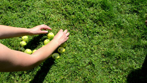 word love built from apples by female male people hand Footage