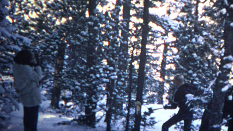 (8mm Vintage) 1965 Man Chopping Tree in Forest Footage