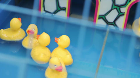 Yellow squeaky ducky in the pool Footage
