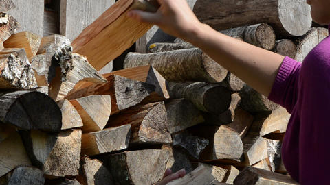 woman hand pick up collect dry chopped firewood Footage