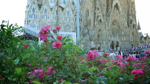 Sagrada Familia and flowers in Barcelona, Spain. Camera panning Archivo