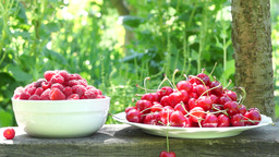 Raspberries And Cherries On A Rustic Bench Footage