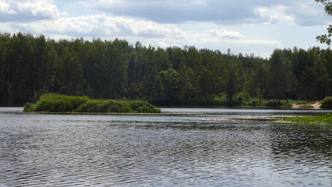 The pond and the island in the summer forest in Russia UHD Footage