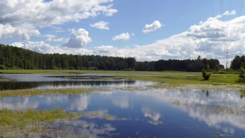 Lake wetland in the countryside with green algae in the summer of 2015 Russia UH Footage