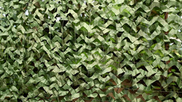 Camouflage Net stock footage