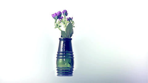 Beautiful Purple Flowers In The Green Bottle Revolve On A White Background stock footage