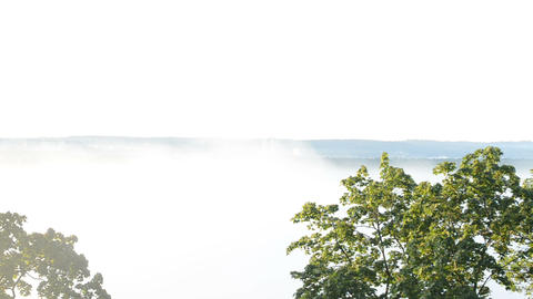 Quick Dense Fog Rise Downhill Houses Forest Landscape Sunrise stock footage