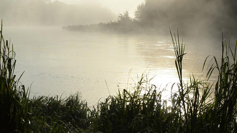 early morning sunrise reflection misty fog rise flow river water Footage