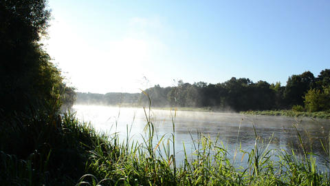 river shore flora flow fog rising water Footage