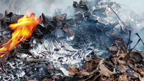 4K Burning Leaves and Garden Waste in Late Autumn 2 Animation