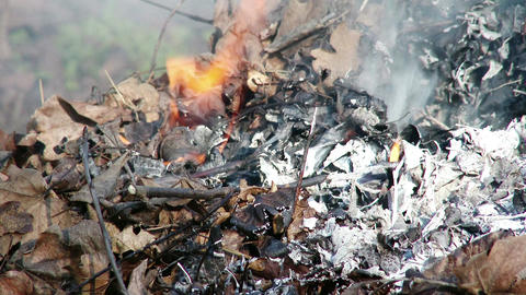 4K Burning Leaves and Garden Waste in Late Autumn 4 closeup Animation