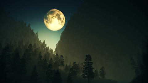 4K Deep Forest Wilderness in Mountains at Night under Fullmoon 3 stylized Footage