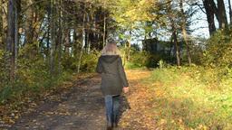 blond woman walk autumn park road color tree leaves sunlight Footage