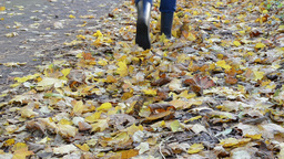 legs rubber boots walk park forest path autumn colorful leaves Footage
