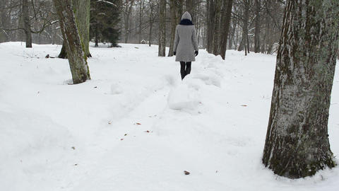woman grey coat walking cleaned snow winter park path Footage