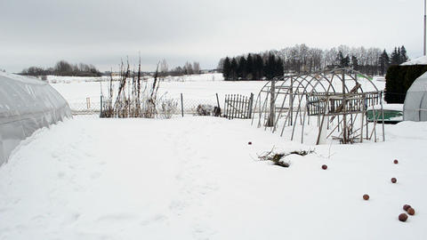 homemade wooden diy greenhouse snow rotten apples winter garden Footage