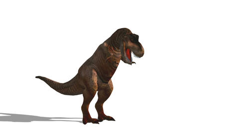 恐竜 T-REX Animation