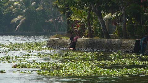 Hand-wash in a river, Kerala, India Stock Video Footage