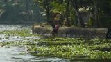 Hand-wash In A River, Kerala, India stock footage