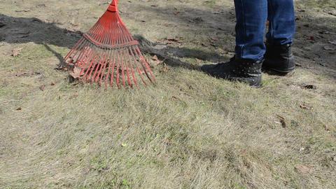 gardener woman rake leaves dry grass garden lawn meadow spring Footage