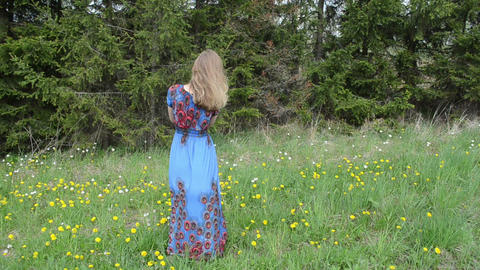 Woman dressed in long blue dress blow sowthistle fluffy seeds Footage