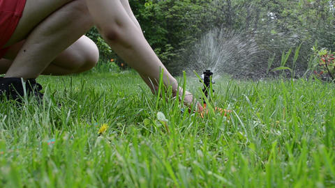 Gardener woman unplug hose from watering sprinkler tool Live Action