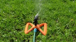 Closeup of sprinkler sprayer tool spray water drops on lawn Footage