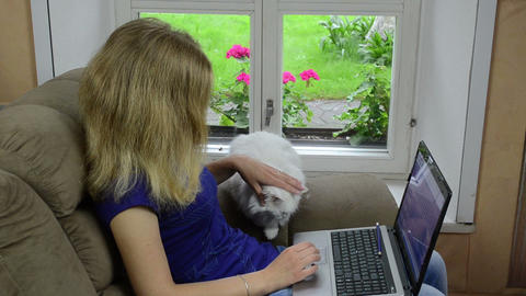 Blond Woman Sitting On Armchair With Laptop Computer And Cat stock footage