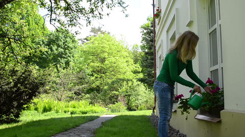 Attractive woman with watering-can water flowers in summer Footage