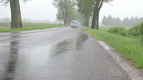 car going on rural asphalt road between old trees in rain Footage